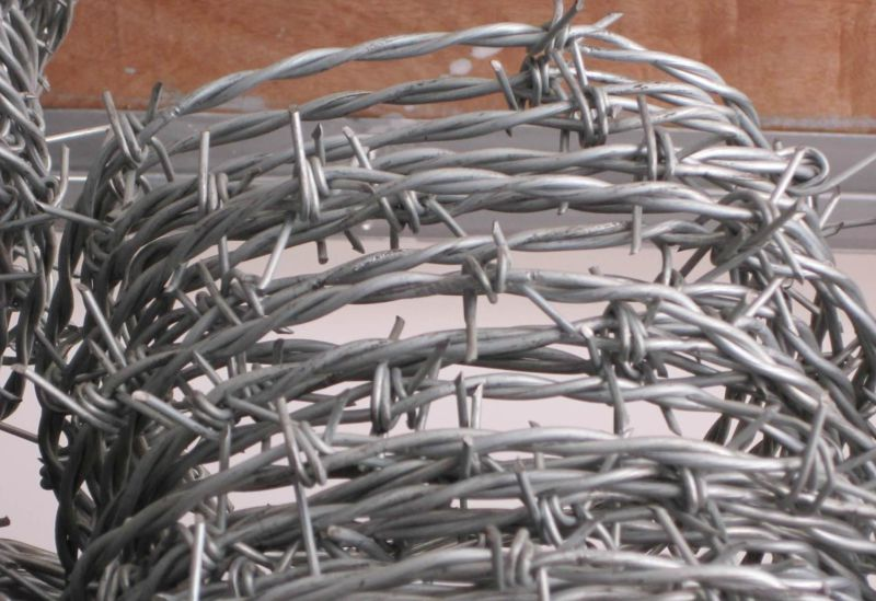 Galvanized Barbed Wire Bwg12*Bwg12 Hot Sale with Certification (Factory)