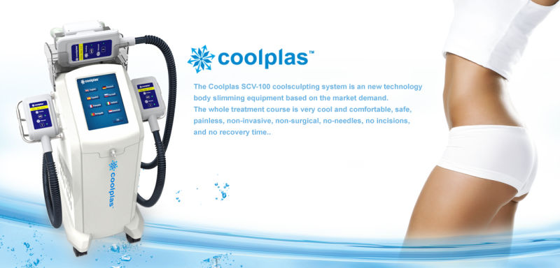 Etg 50 4s Criolipolisis Cryotherapy Fat Freezing Machine with 4 Different Size Handles