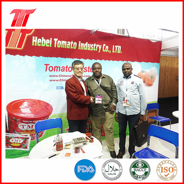 70g Sachet Tomato Paste with Fine Tom Brand