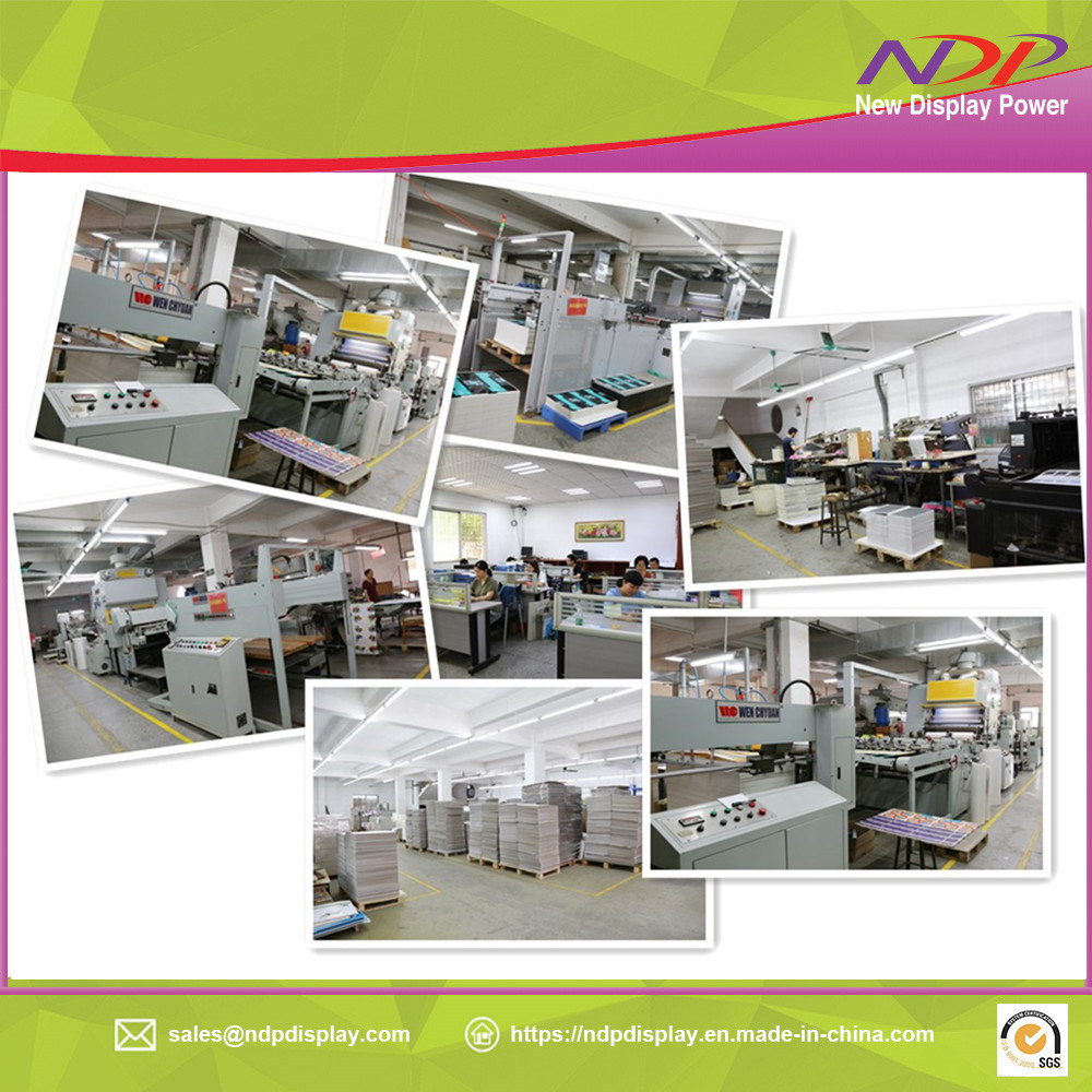 Factory Machining Kinds Type Folding Paper Case Display Store Shelves