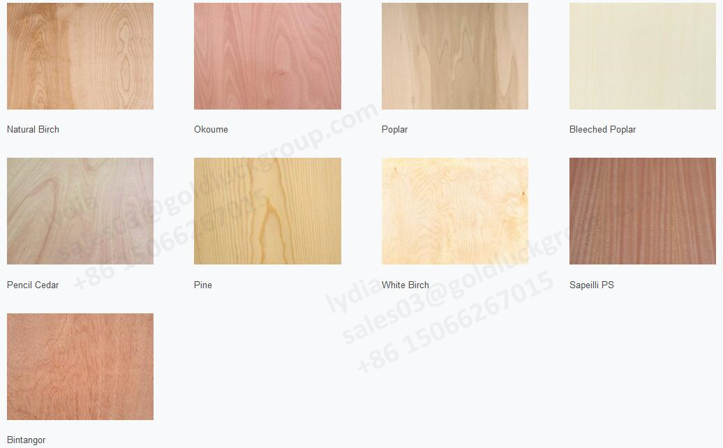 4/6/9/12mm Bintangor/Okoume/Poplar/Cherry/Teak/Birch Laminated Plywood for Furniture