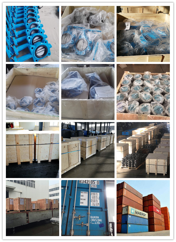 Ductile Iron Lugged Type Wafer Butterfly Control Valve