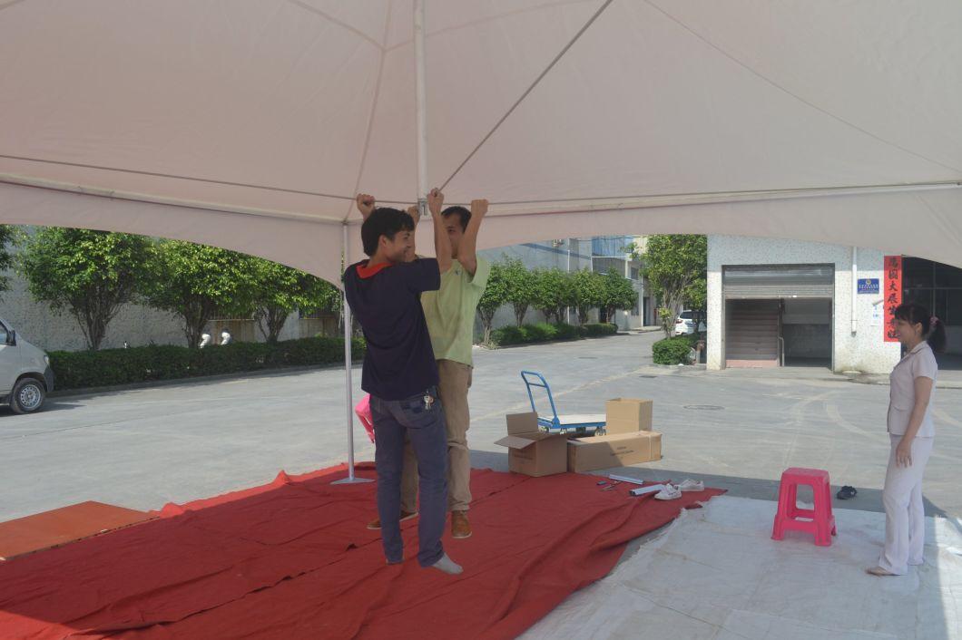 Pagoda Tent 5mx5m for Gazebo or Pavilion in Your Family Garden