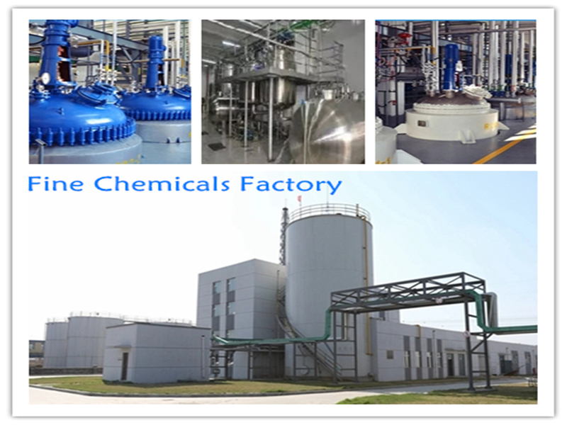 Fine chemicals factory