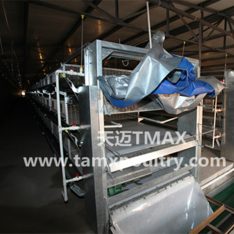 Chicken Manure Removing System
