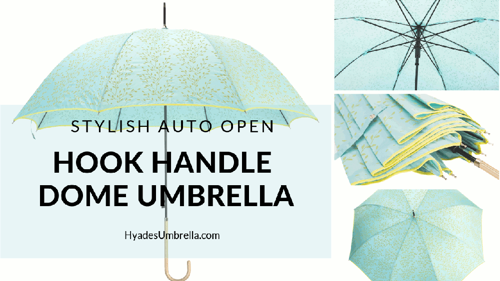 Stylish Auto Open Hook Handle Dome Umbrella