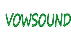 Dongguang Vowsound Electronics Co., Ltd.