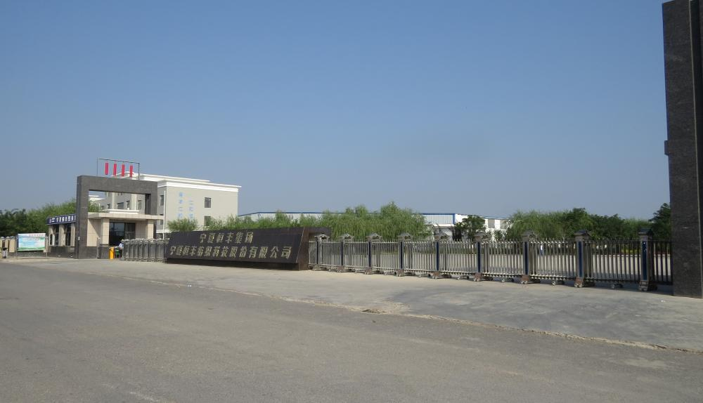 Ningxia Hengfeng Textile technology Co.,ltd