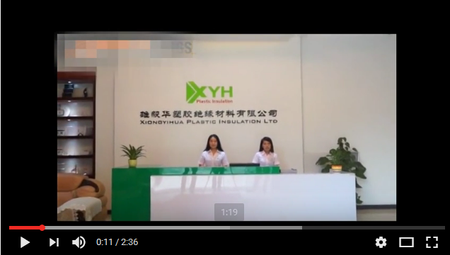 Video of XYH