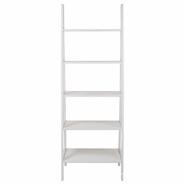 5-Shelf Ladder Bookcase & Flower shelf