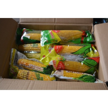 High natural bulk  yellow corn for sale