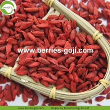 Factory Hot Sale Dried Tibet Wolfberry