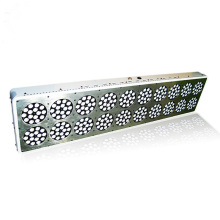 Best Quality for LED Grow Led light AC100-240V Apollo 20 LED Grow Light export to Israel Manufacturers