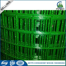 Green Galvanized welded wire mesh screen