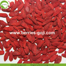 Wholesale Improve Eyesight Zhongning Goji Zhongning Goji
