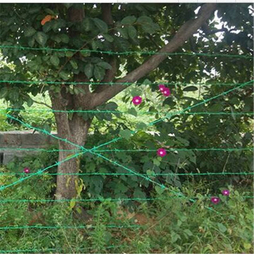 Anti Climp Fence Barbed Wire