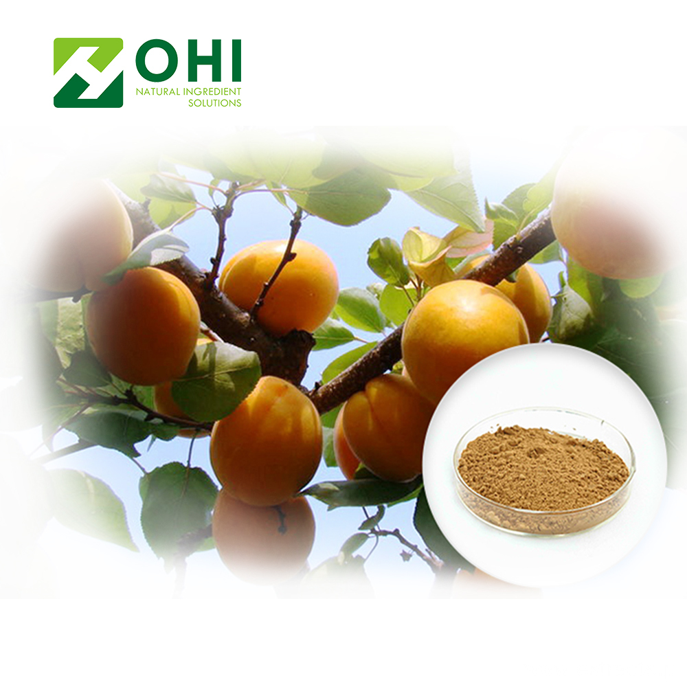 Bitter Apricot Seed Extract Amygdalin Vitamin VB17 Powder