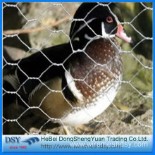 small hole lowest price chicken wire mesh