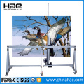 3D Inkjet Wall Printing Machine Direct To Wall