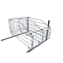 Automatic Solid Rod Galvanized Adult Pig Gestation Stall
