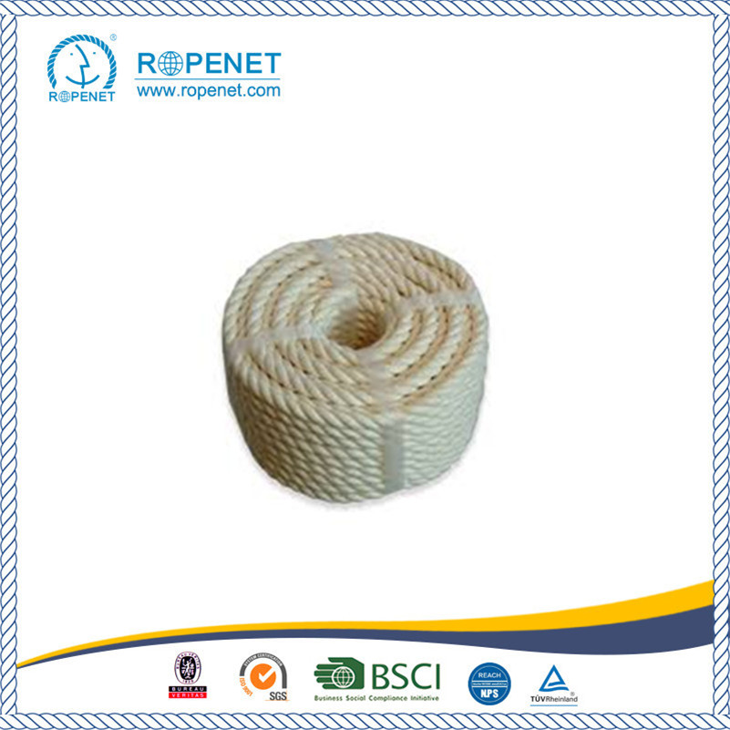 High Quality 100% Cotton Rope for Sale