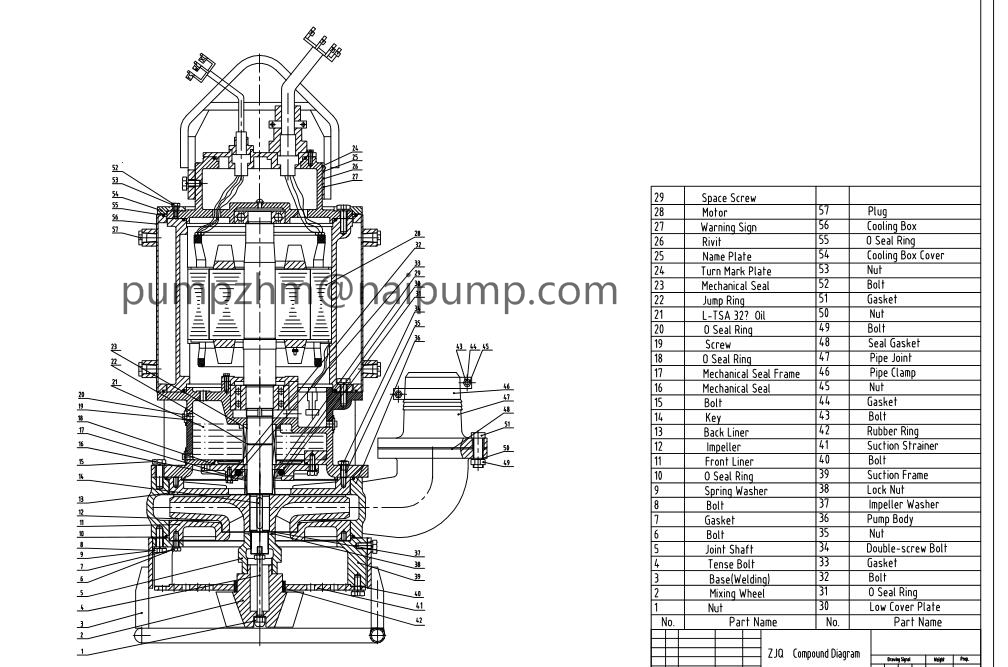 ZJQ pump with agitator assembly drawing_