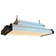 Quantum board 600Watt Commercial grow lamp