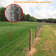 Galvanized High Tensile Steel Fence for Livestock