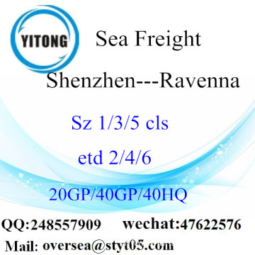 Shenzhen Port Sea Freight Shipping To Ravenna