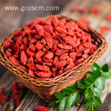 Historic Multiple Nourishing EU Certificate Goji Berry