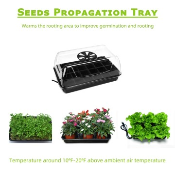 Strawberry Home Indoor Greenhouse Hydroponic Growing Systems