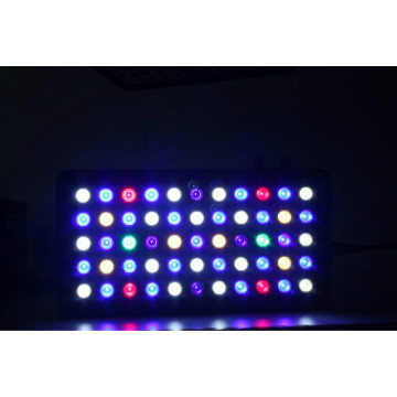 CE / RoHS உடன் Dimmable 165W LED Aquarium Lights