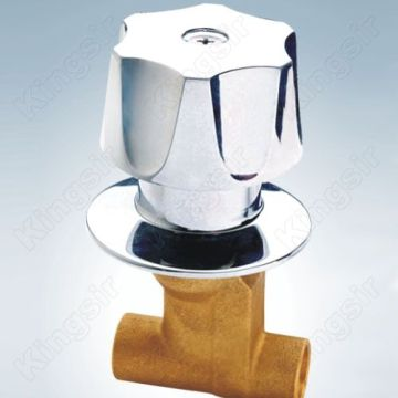 Brass Shower Stop Valve With Abs Flange