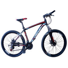 Grey Mountain Bike with Disc Brake
