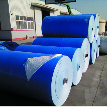 Heavy duty blue PE tarpaulin