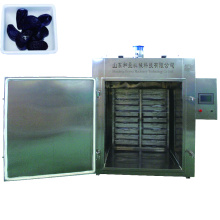 Factory Price Black Garlic Machine Garlic Processing Machine
