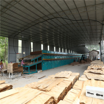 Thailand Core Veneer Dryer Machinery