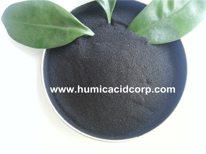 Natural leonardite source super potassium humate fertilizer