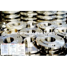 Stainless Steel ANSI B16.5 304 316 Forging Flanges