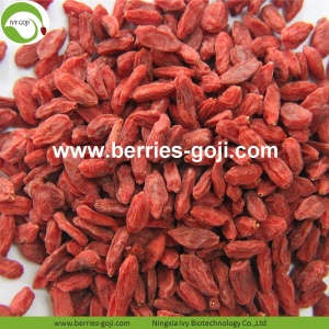 Factory Supply Nutrition Dried Bio Goji