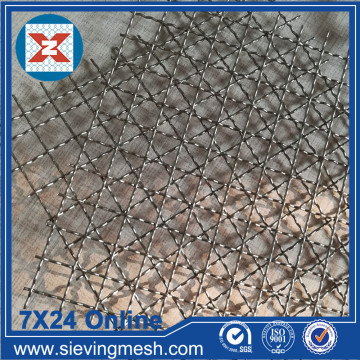 SS 304 Crimped Wire Net