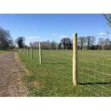 steel Farm filed fence hinge joint cattle fence