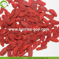 Factory Super Food Dried Red Goji Bayas