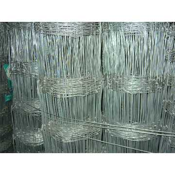2.5mm hot dipped galvanized cattle filed fence