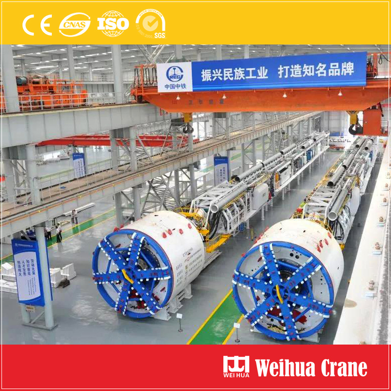 Tunnel Boring Machine Crane