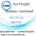 Shantou Port LCL Consolidation To Auckland