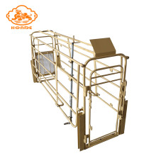 European type pig farm equipment sow cage