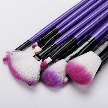 12 makeup brush with dark buckle cloth bag