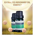 Rosemary Oil Rosmarinus officinalis 100% Aromatherapy Oil