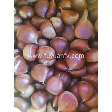 2019year new crop fresh chestnut